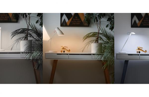 Newell LED desk lights